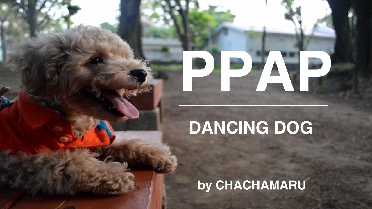 ppap_top